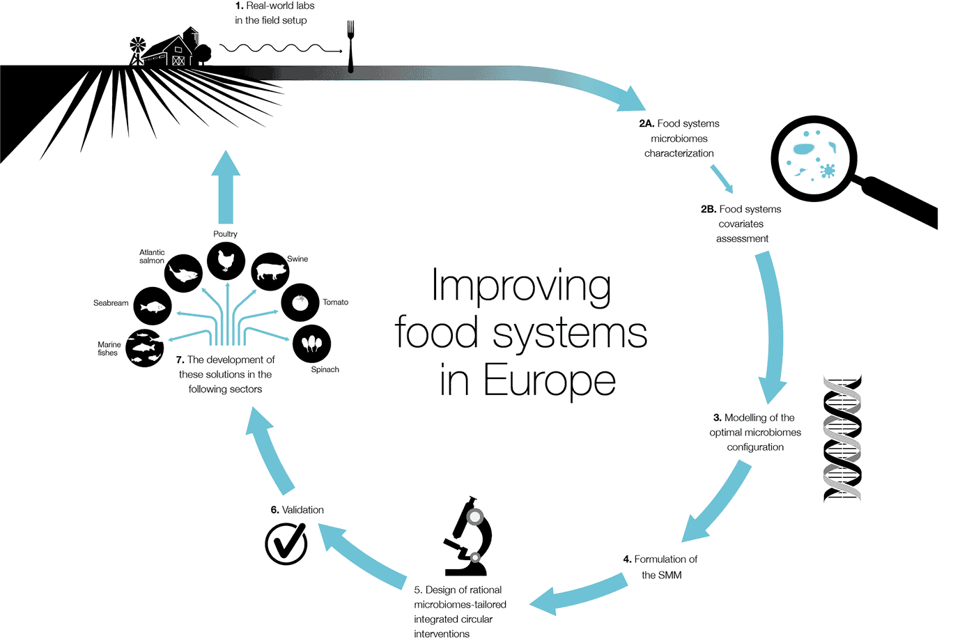 improving food system infographic